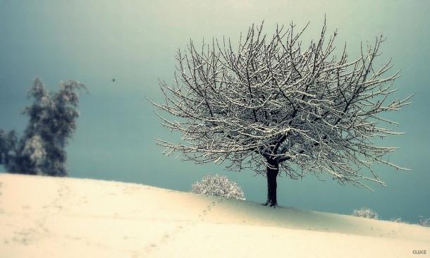 let_it_snow___the_final_cut_by_cluke111-d2i34om