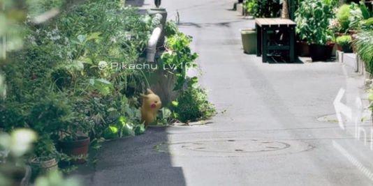 4751226_3_4b1d_un-pikachu-en-plein-milieu-de-la-rue-c-est-le_525e7e783ffacc9d96536f6923456dcd