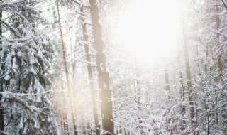 snow__light___wallpaper_by_gloeckchen