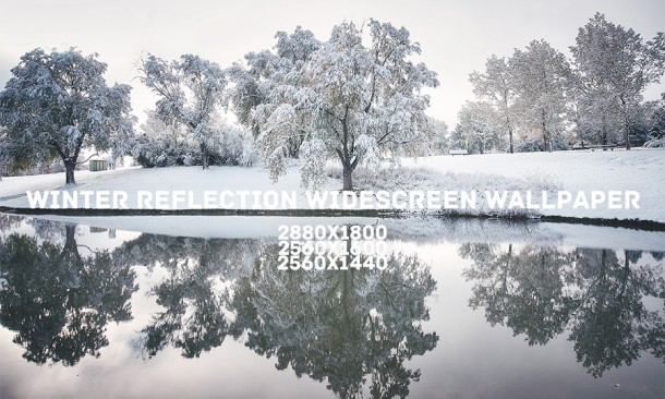 winter_reflection_widescreen_wallpaper_by_solefield-d6xoebk
